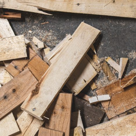 Papier Strohhalme für eine verantwortungsvolle Waldwirtschaft
